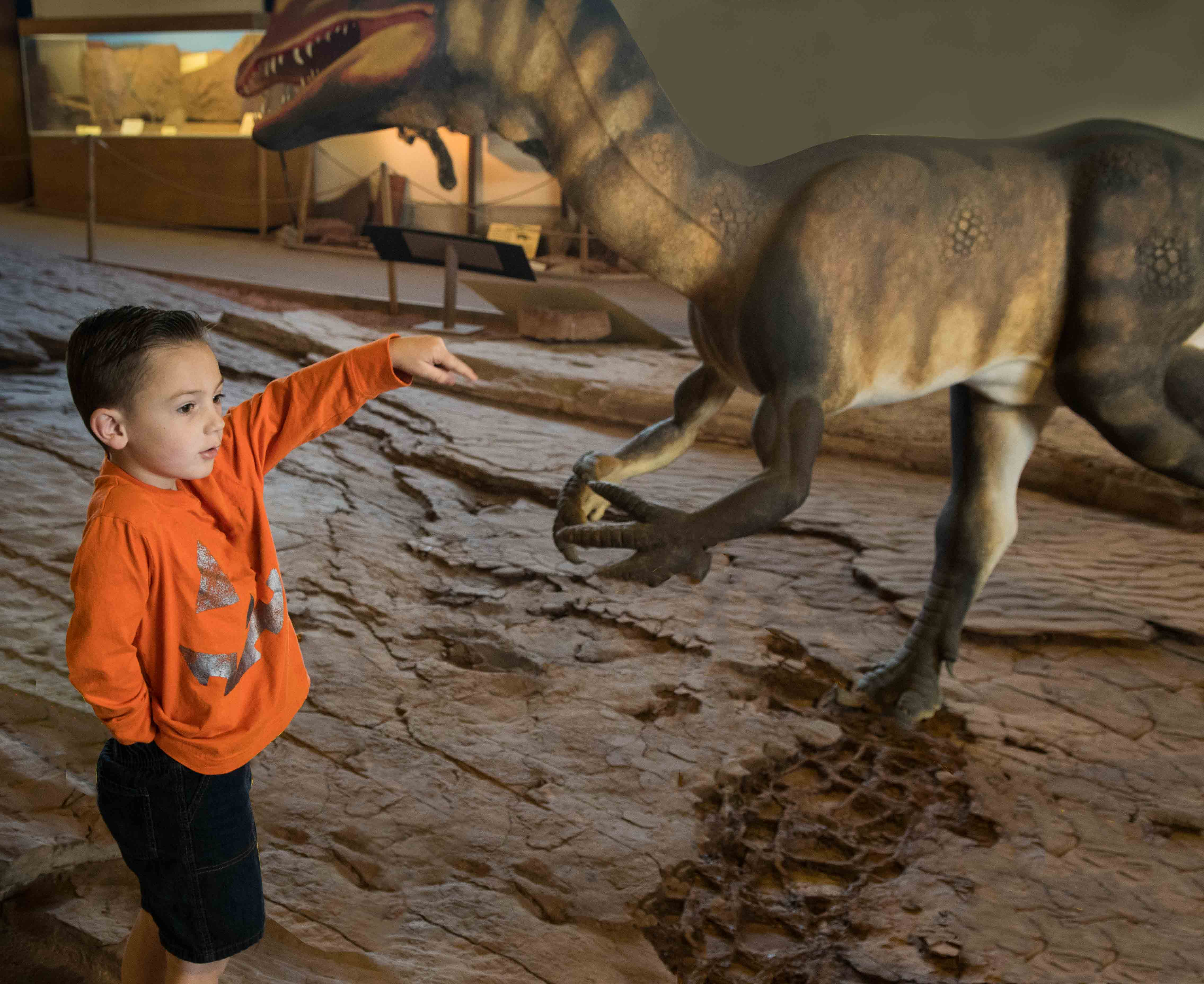 Beckett Bringhurst looks at a Dilophosaurus making footprints 200 million years ago, Dinosaur Discovery Site, St. George, Utah, Oct. 31, 2016 | Photo by Jim Lillywhite, St. George News