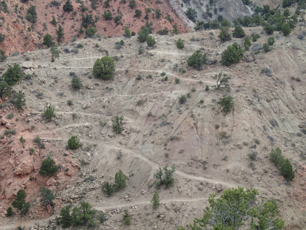 Currently unnamed trail at Thunderbird , date unspecified | Photo courtesy of BLM Cedar City Field Office, St. George News / Cedar City News