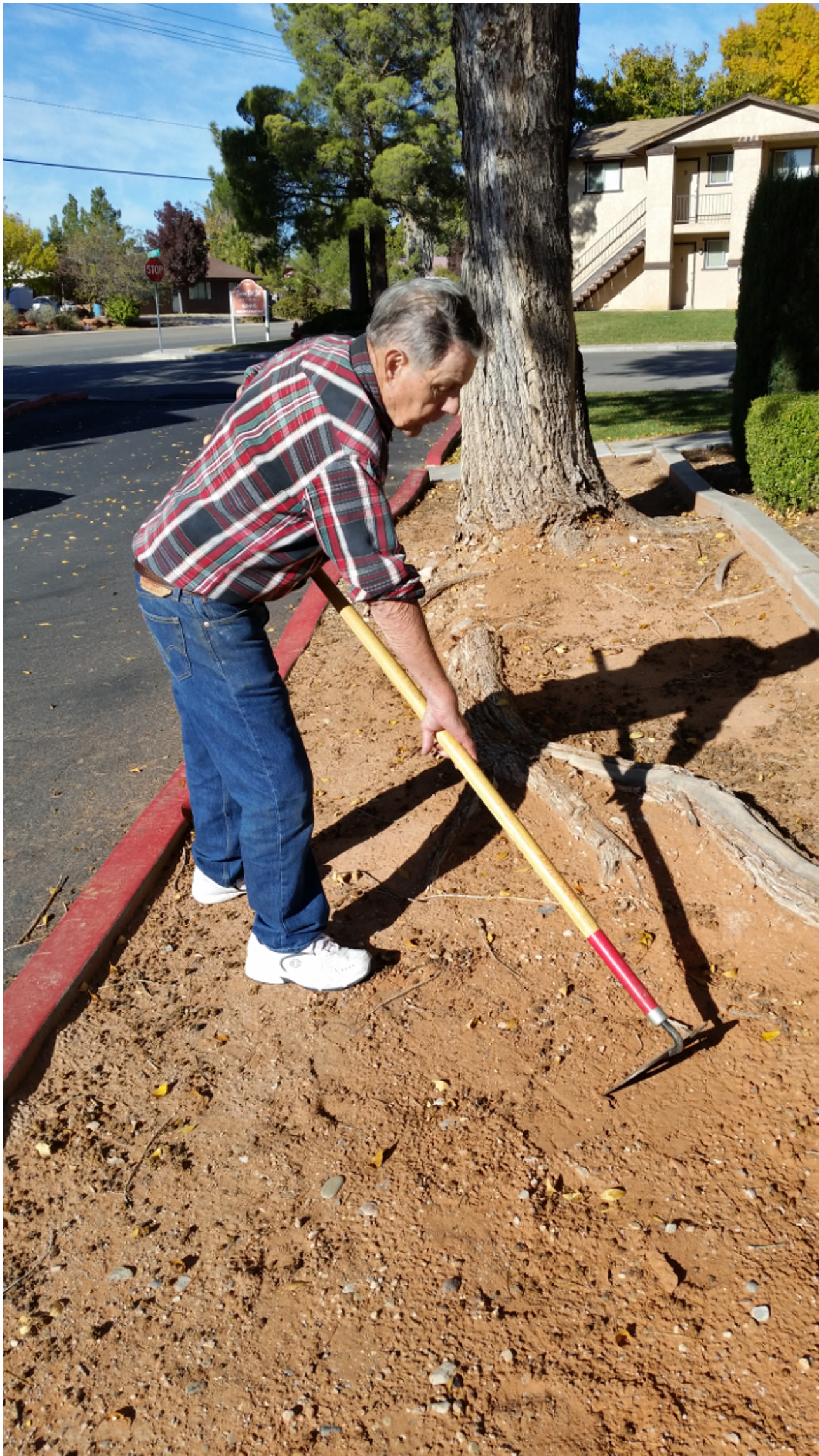 St. George resident Pearson Davis spends his days cleaning up vacant lots and common areas on the west side of St. George. The man's three-wheeled bicycle was stolen Monday; local residents and others have already funded a replacement for him, St. George, Utah, Nov. 30, 2016 | Photo courtesy of Dean Rein, St. George News