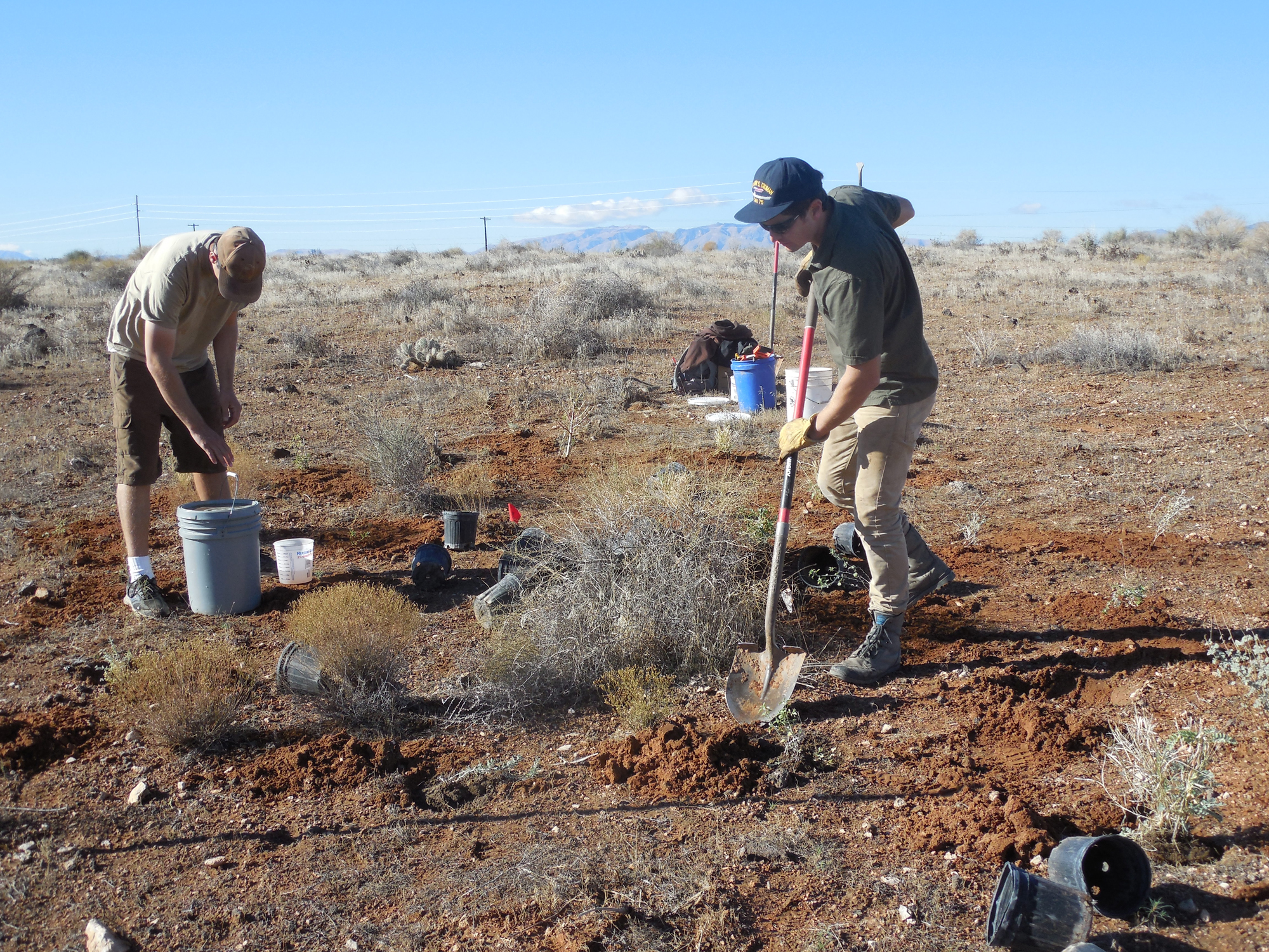 L-R, Nathan St. Andre and Jeff Jenkerson, technicians with the Utah Division of Wildlife Resources, plant native shrubs and grasses in the Red Cliffs Desert Reserve, Washington County, Utah, Nov. 22, 2016 | Photo by Julie Applegate, St. George News