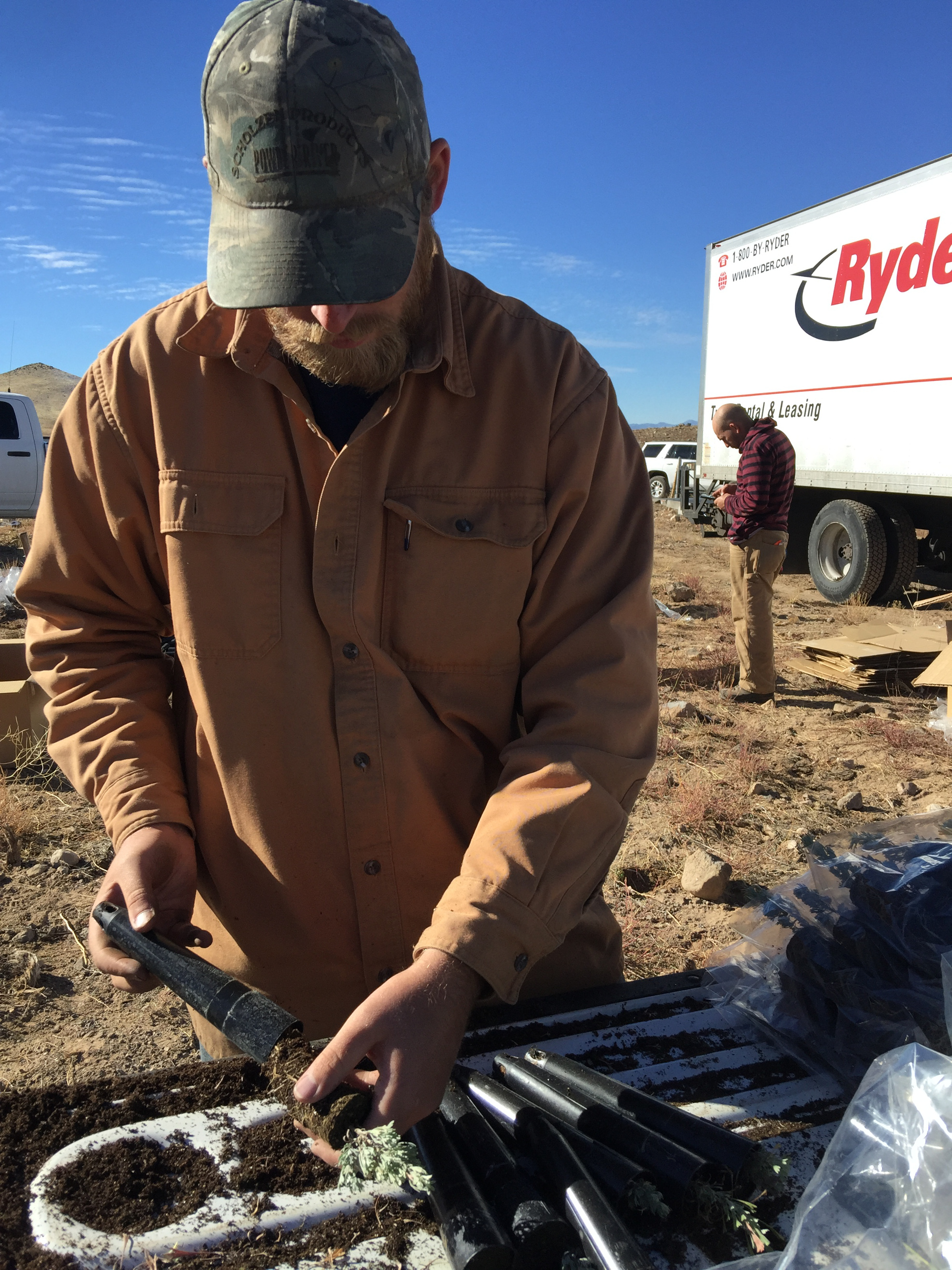 Bureau of Land Management staff plant sagebrush at the site of the 2012 Baboon Fire, Beaver County, Utah, Nov. 18, 2016 | Photo courtesy Bureau of Land Management, St. George News