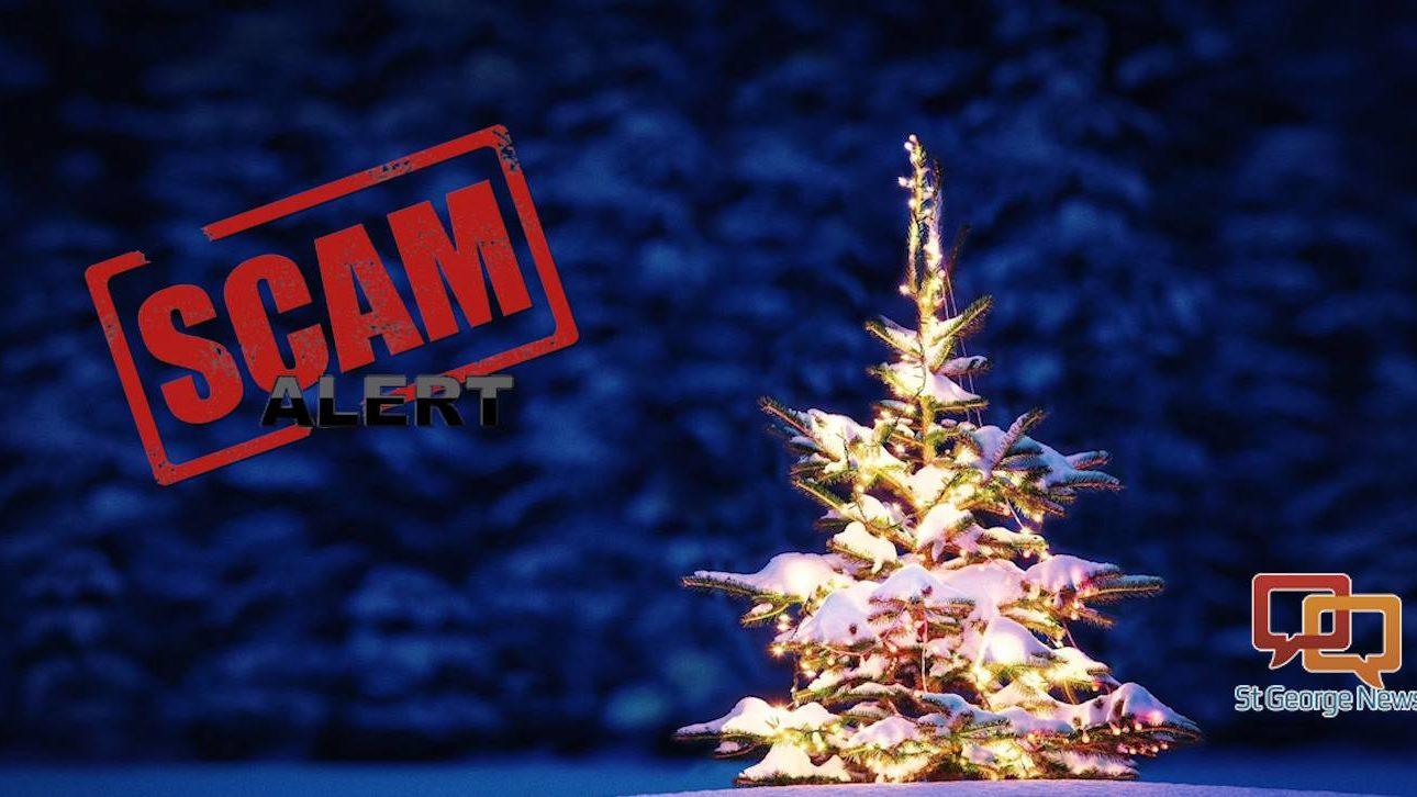 Gift expert groups christmas programs