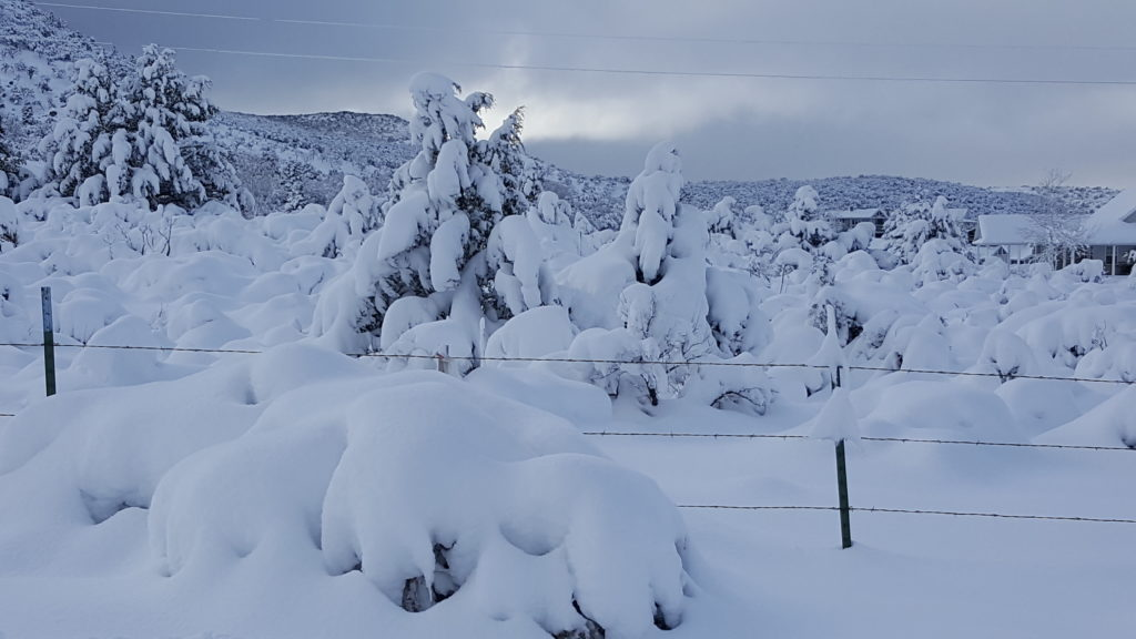 Snow in Southern Utah, photo gallery - St George News