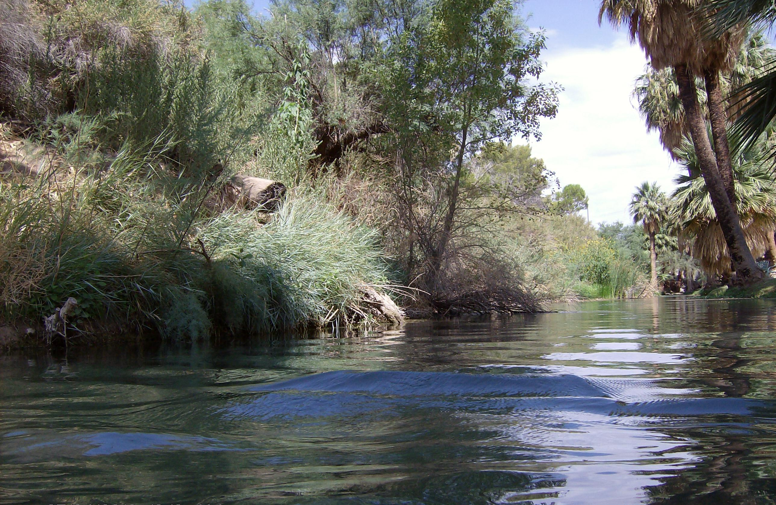 The 116-acre Muddy River Reserve Unit is located in the Upper Muddy River watershed near the town of Moapa, Nevada, date not specified | Photo courtesy of Clark County, Nevada, Desert Conservation Program; St. George News