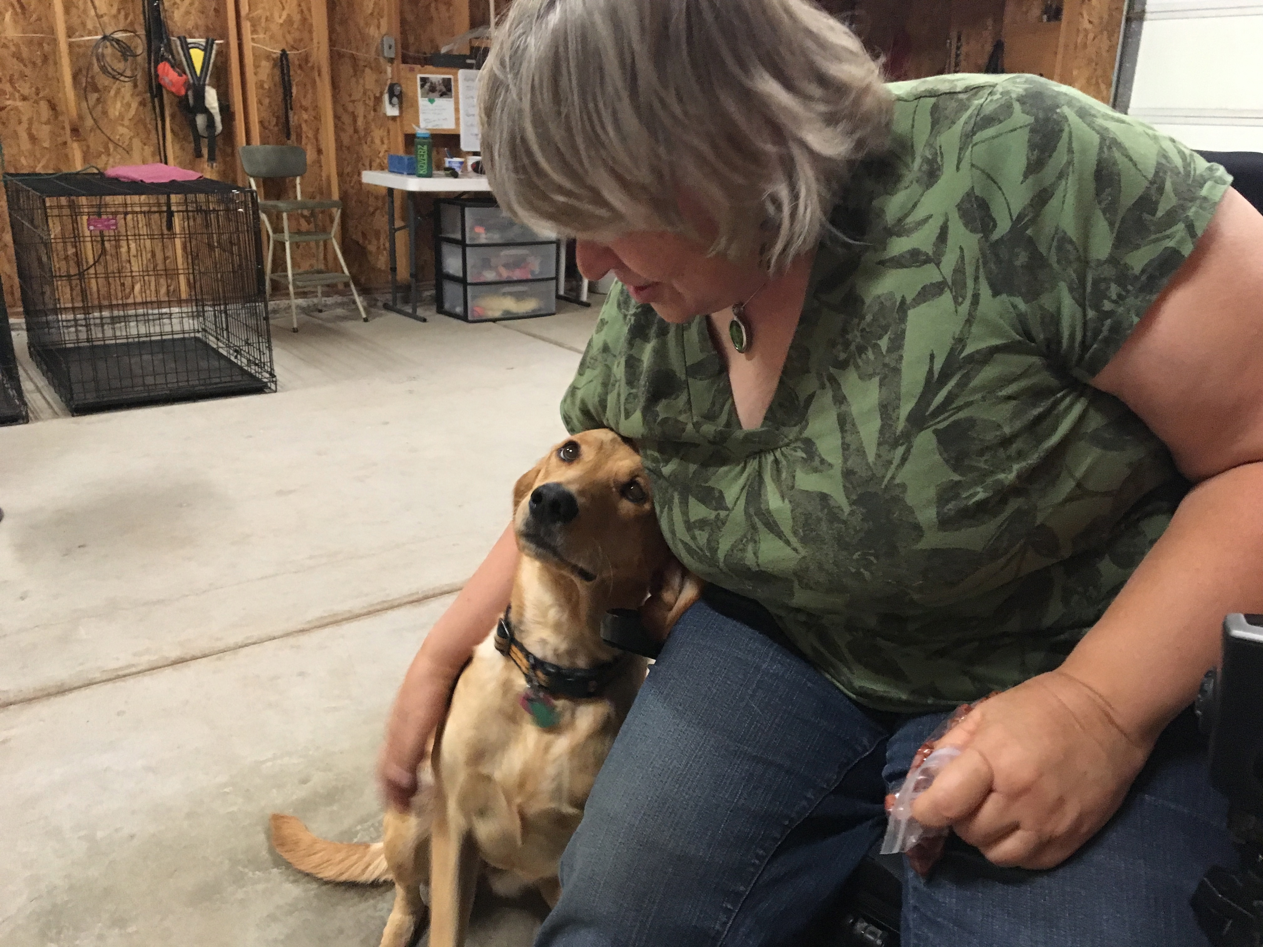 Deb Johnson pets Katie the service dog, Loving Angel Service Dogs, St. George, Utah, Aug. 5, 2016 | Photo courtesy of Cathy Powell, St. George News