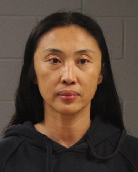 Li Ying, of San Gabriel, California, booking photo posted Jan. 11, 2017 | Photo courtesy of the Washington County Sheriff's Office, St. George News