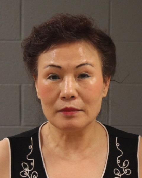 Yuxoang Wang, of St. George, Utah, booking photo posted Jan. 11, 2017 | Photo courtesy of the Washington County Sheriff's Office, St. George News