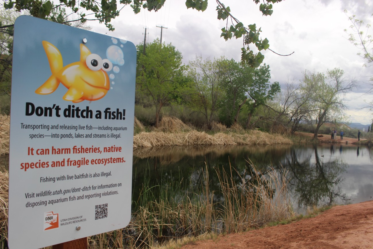 Fish aquarium utah - A Sign At Brooks Pond In St George Advises Visitors Not To Dump Their Pet Fish Into The Water St George Utah March 22 2017 Photo By Mori Kessler