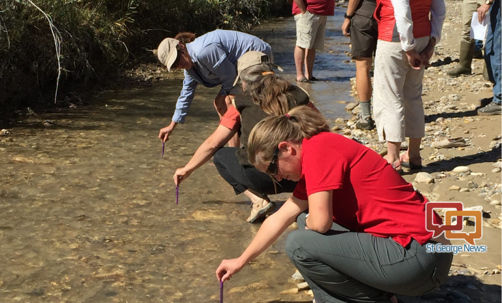 Thumbnail for Citizen science; volunteers needed for lakes, rivers, streams