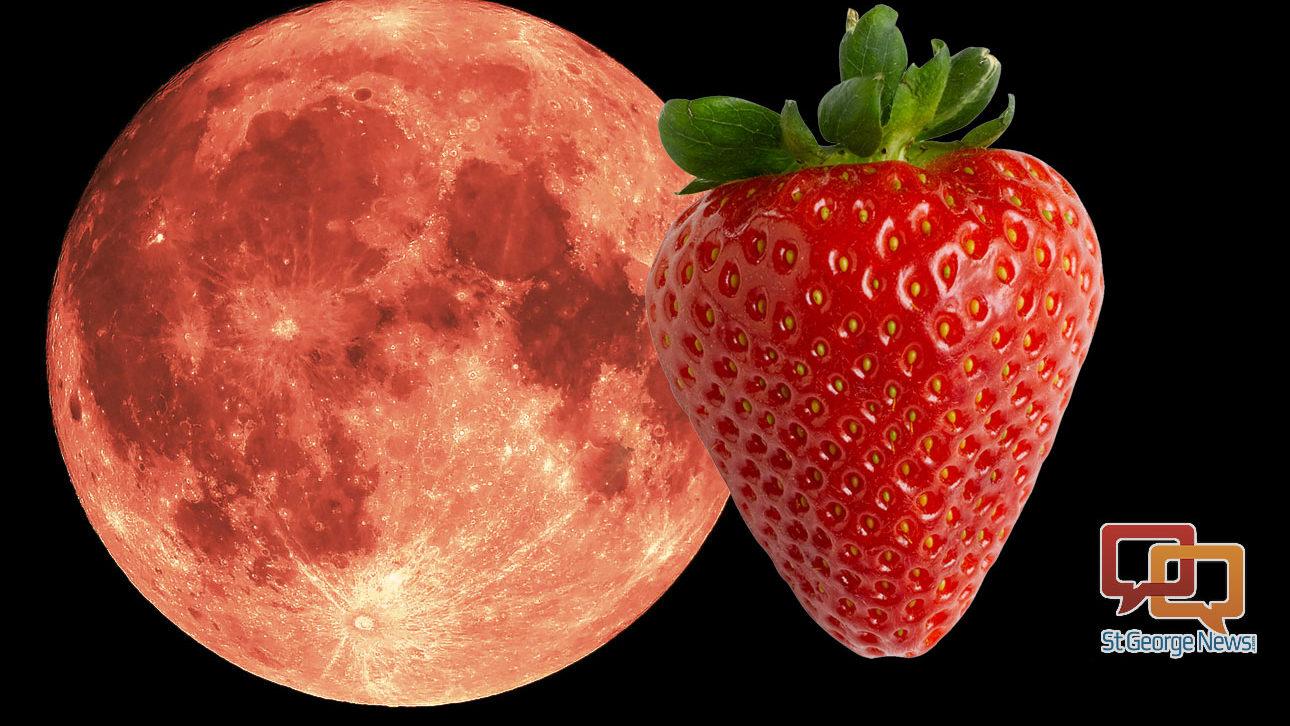 strawberry moon - 1290×726