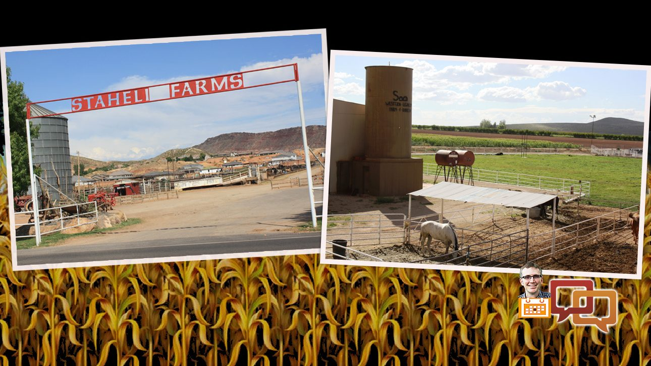 farm day: staheli and western legacy do more than just halloween