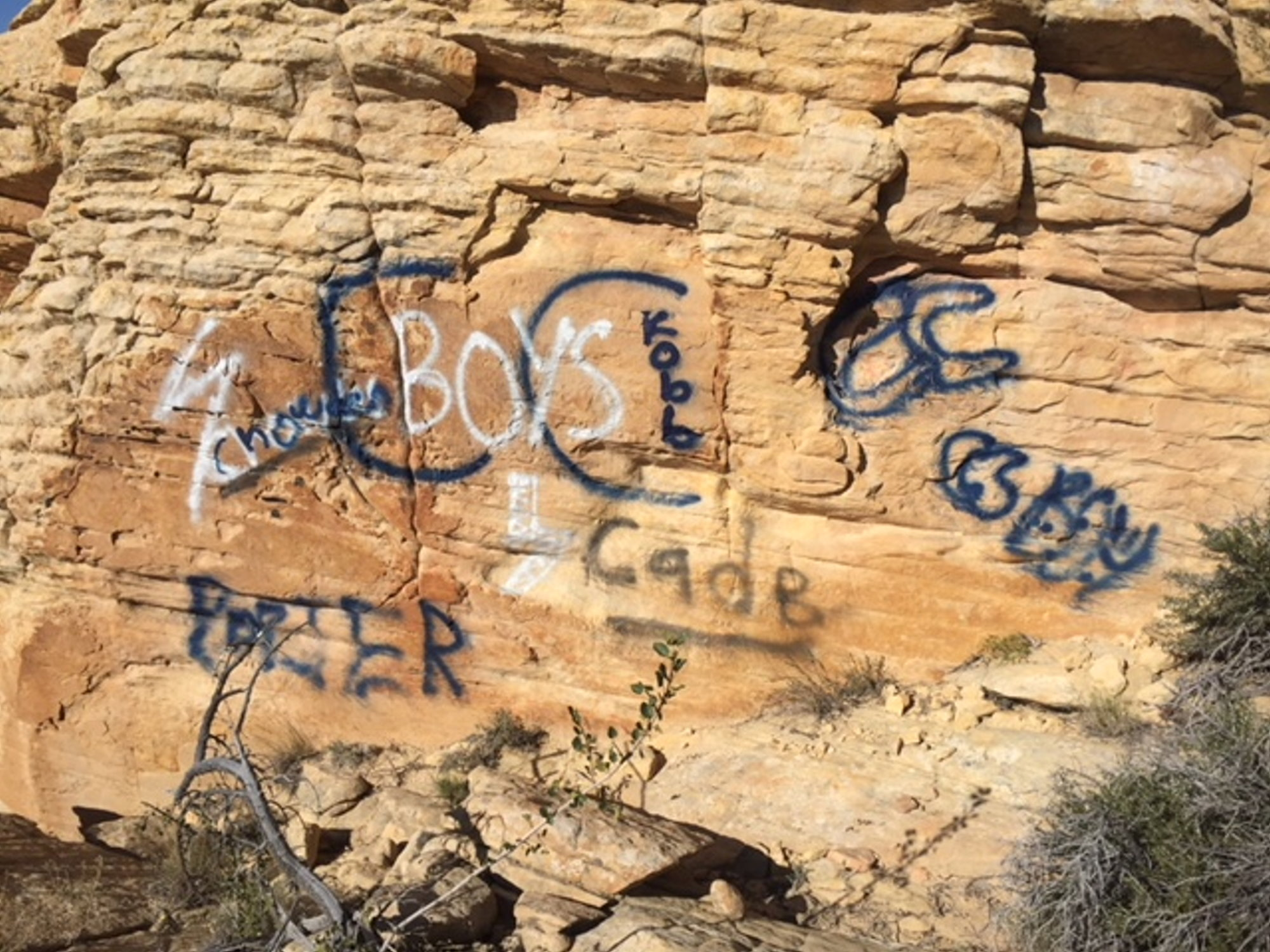 snow canyon state park official says vandalism was premeditated