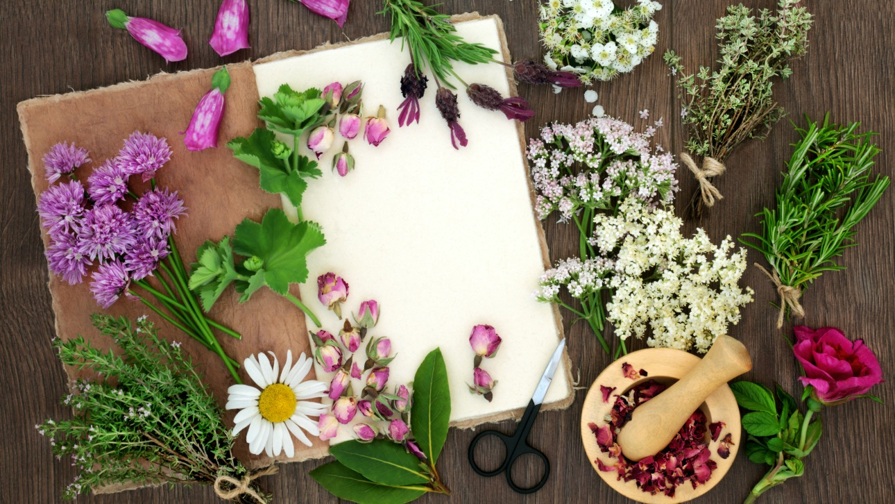 Heres the best way to harvest and dry flowers for year round dried flowers photo by bloeman drogan istock getty images plus st george news izmirmasajfo