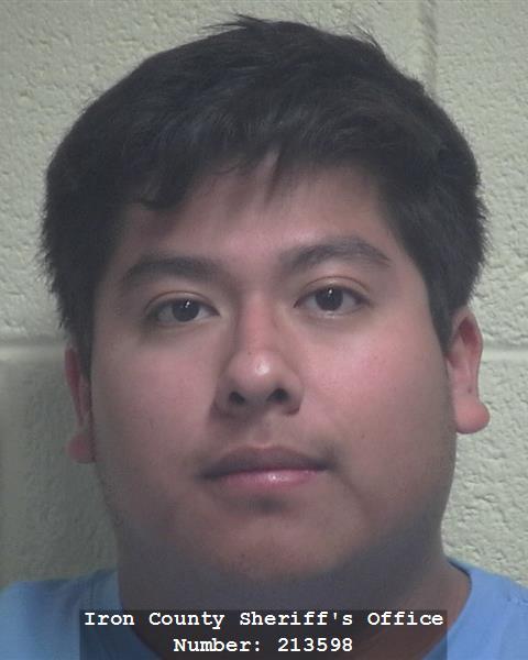 Homeland security official arrested in internet sex sting