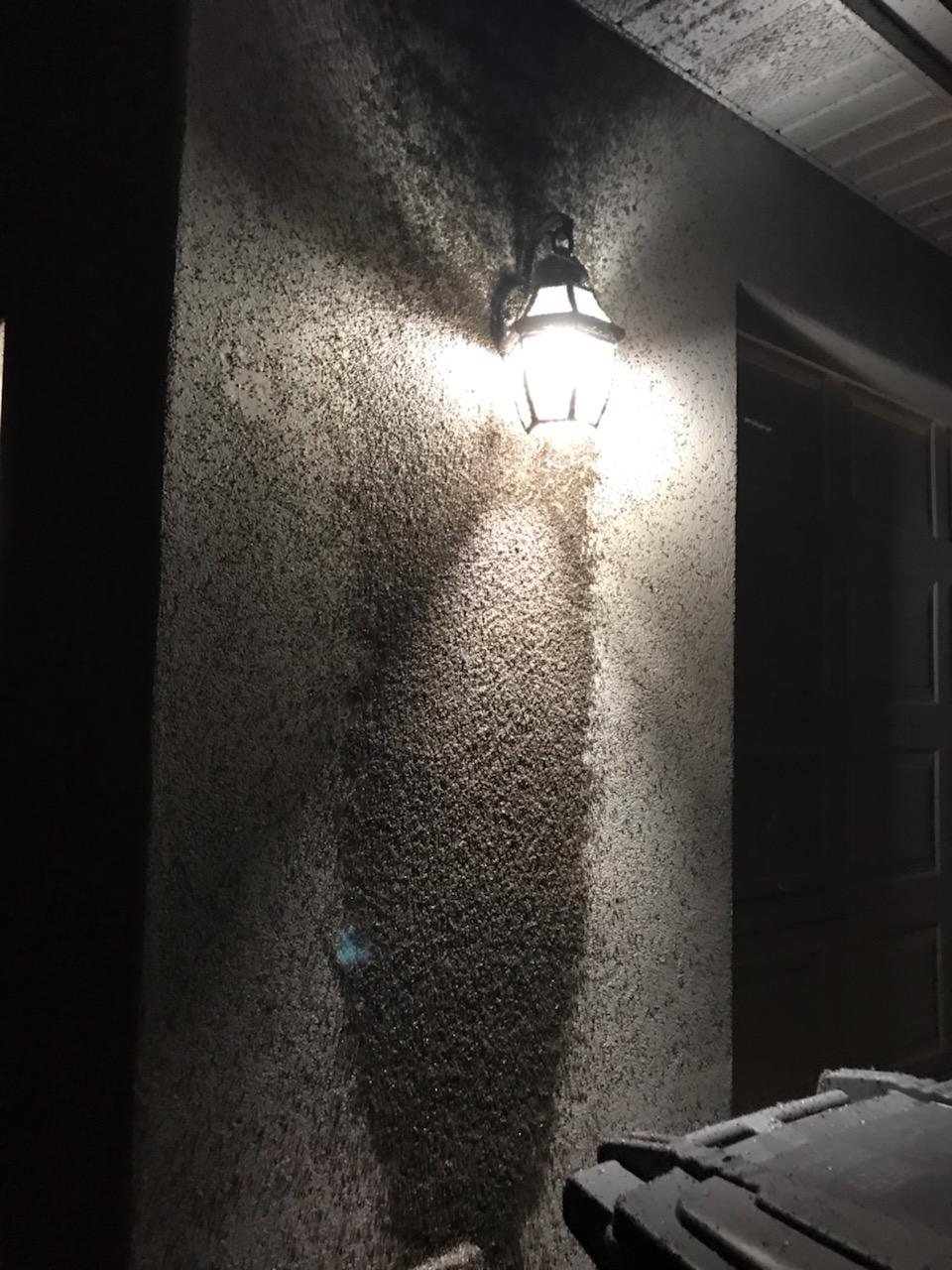 Bugged by bugs? Southern Utah residents getting swarmed by