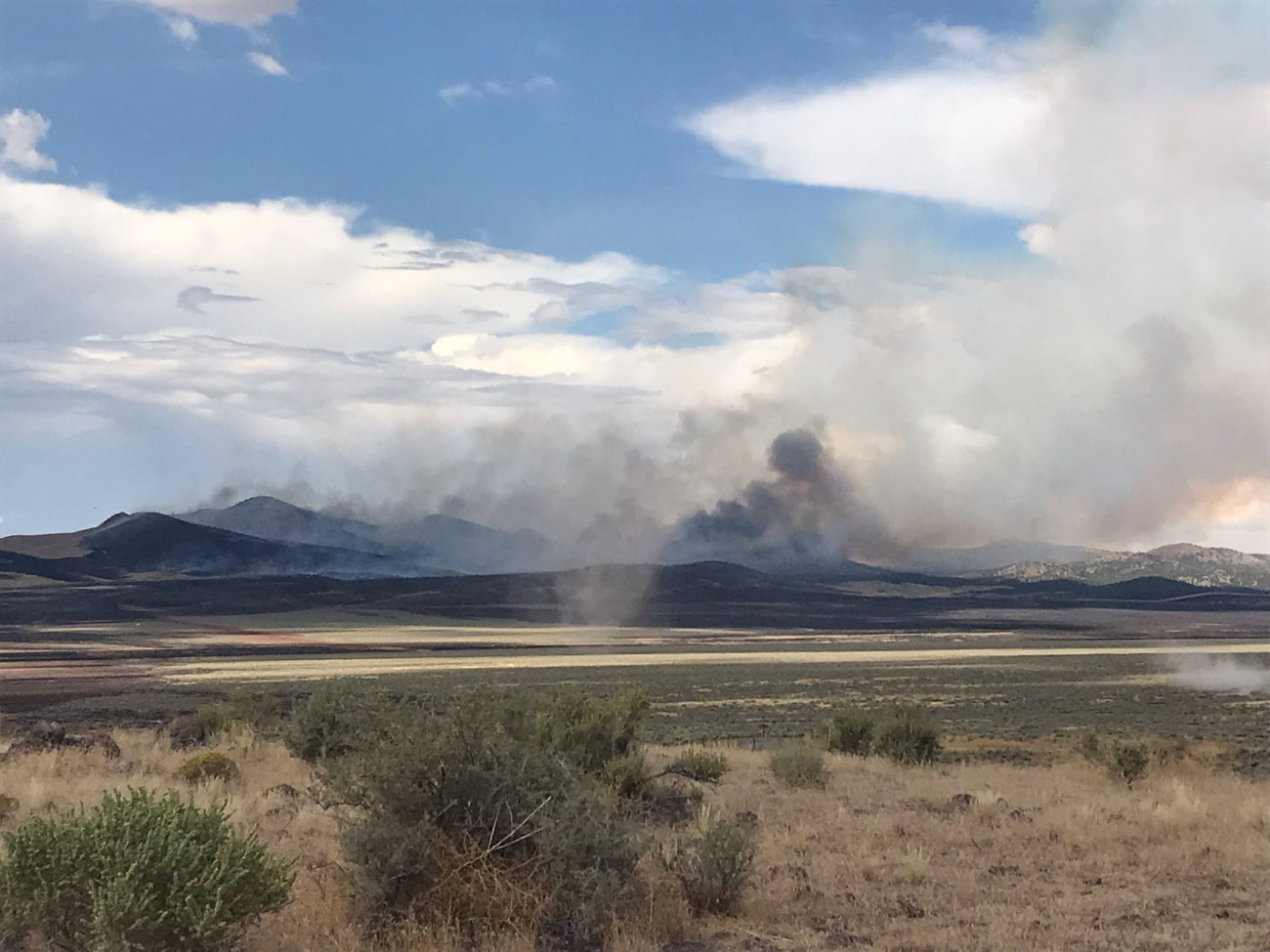 New team takes control of Neck Fire while new fires ignite
