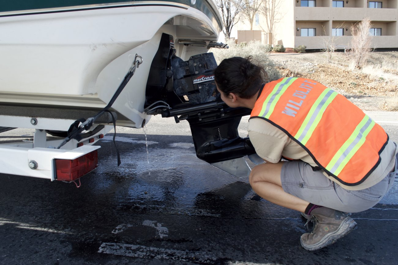 Over 16K boats in Utah inspected for invasive mussels over holiday weekend